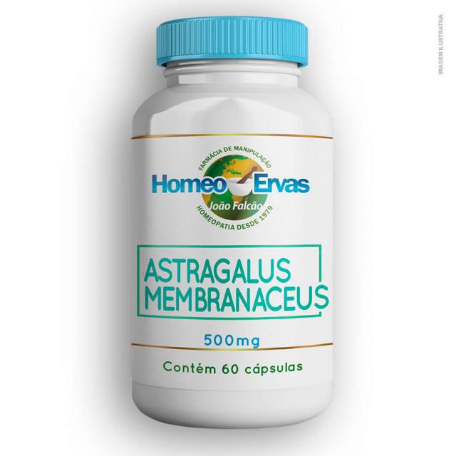 20190701112815_astragalus-membranaceus500mg60cap.jpg