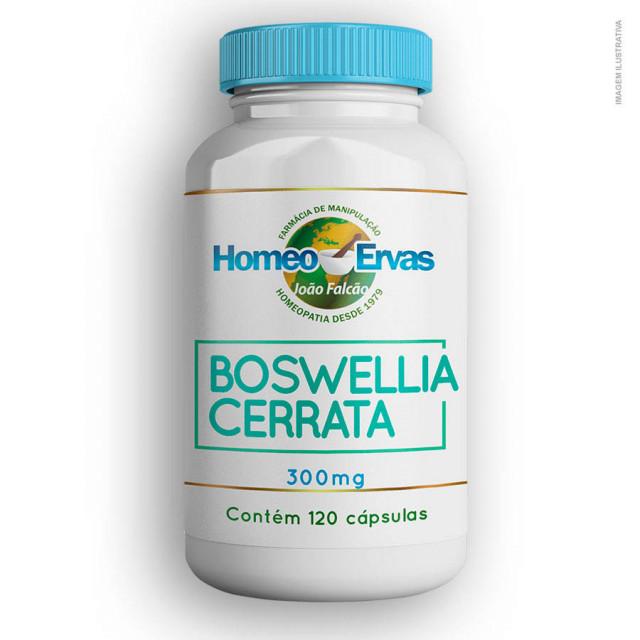20190701121705_boswellia-serrata-300mg120cap.jpg