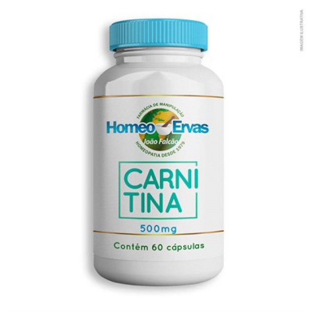 20190701171848_carnitina-500mg60-cap-93.jpg