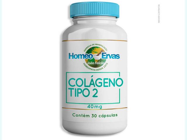 20191218180217_colageno-tipo2-30-capsulas.jpg
