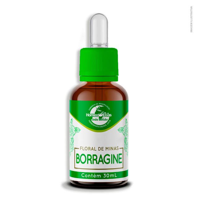 20190708081602_floral-de-minas-borragine.jpg
