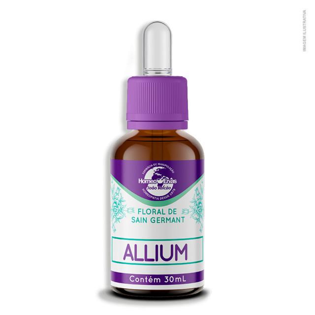 20190821162114_floral-de-sain-germant-allium.jpg